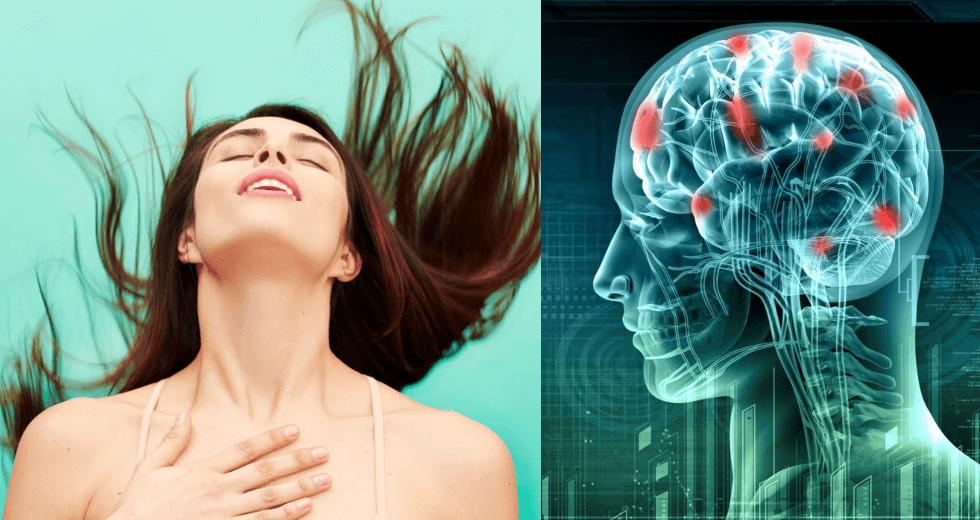 σεξ - εγκέφαλος